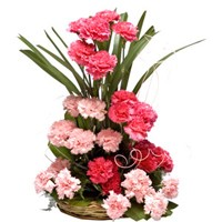 Basket arrangement of carnations in shades of pink
