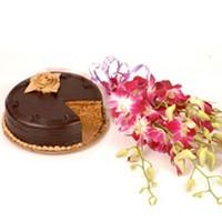 Beautiful orchids with chocolate cake.