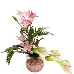 5 asiatic lilies & 3 anthuriums arranged in a glass vase with pebbles.