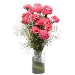 Bunch of 15 pink carnations in a glass vase.