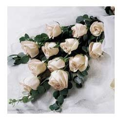 Bunch of 12 white roses with seasonal fillers.