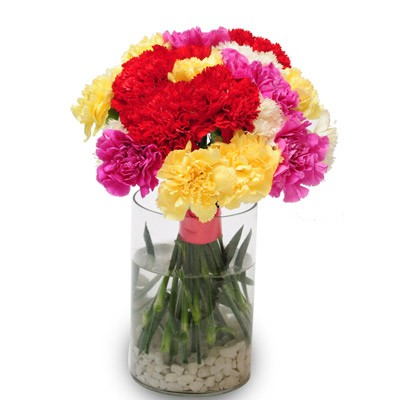 A glass vase arrangement of 24 mixed carnations.