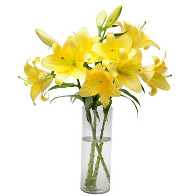 Glass vase arrangement of 10 yellow asiatic lilies.