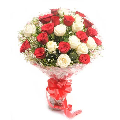 Bunch of 30 red and white roses with fillers.