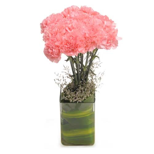 10 fresh pink carnations in a glass vase.