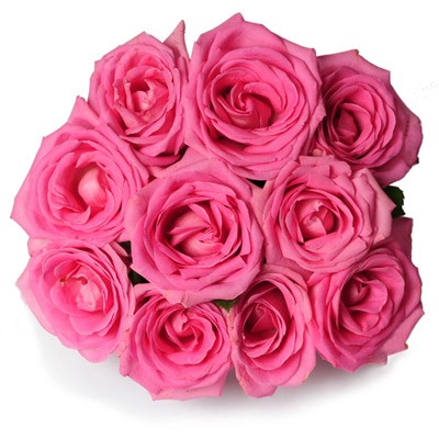 Bunch of 10 pink roses tied with a ribbon.