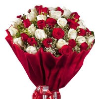 Bunch of 50 red and white roses.