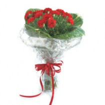 Beautiful bunch of 12 red carnations.
