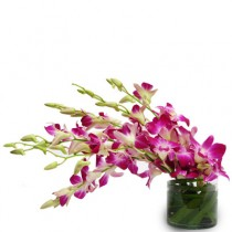 6 purple orchids arranged in a glass vase.