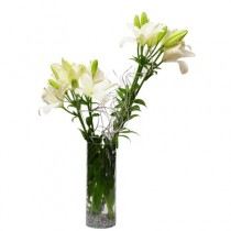 Arrangement of 6 white Asiatic lilies in a glass vase.
