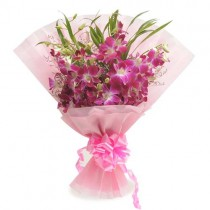 Bunch of 6 purple orchids in a pink paper packing.