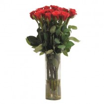 15 red roses in a glass vase.