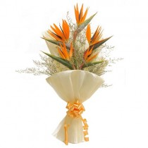 Orange birds of paradise with green fillers.