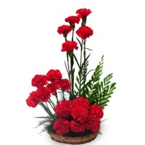 20 red carnations arranged in a basket with green fillers