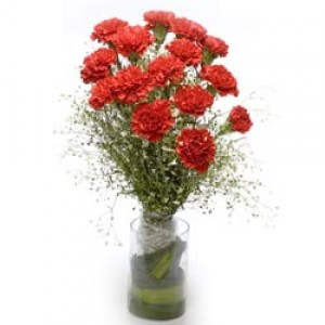 15 red carnations  in a glass vase.